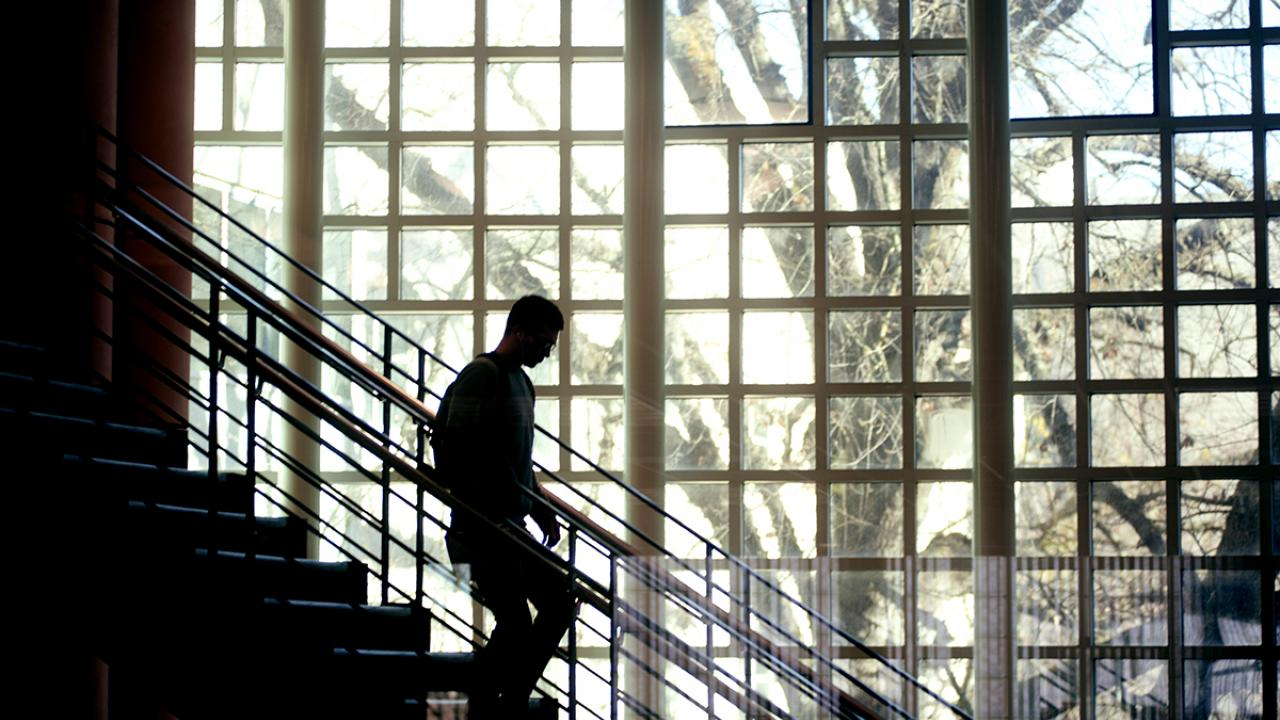 Student walking down stairs in UC Davis Library