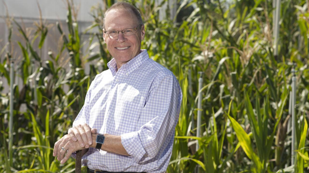 EVANS STANDS IN THE STUDENT FARM AT UC DAVIS