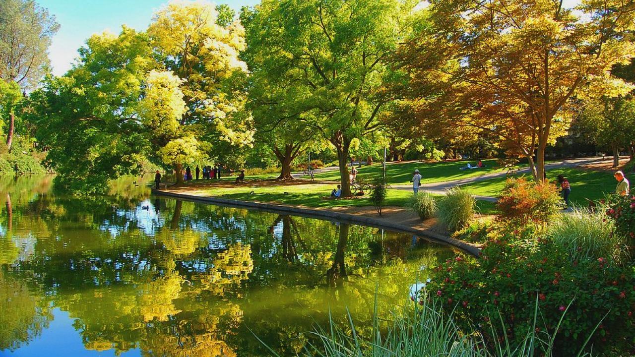 Washington D C Picnic Day Arboretum Smithsonian Event One