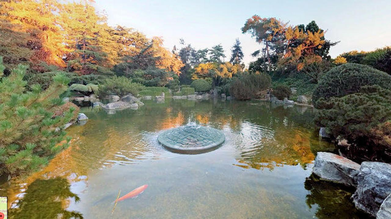 Photo of the Japanese Friendship Garden
