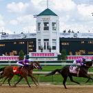 Three horses racing at the Kentucky Derby.