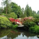 Pond, bridge and greenery