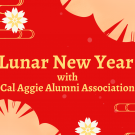 "Yellow text reading ""Lunar New Year with Cal Aggie Alumni Association"" on a red background with white, yellow, and lighter red flowers."